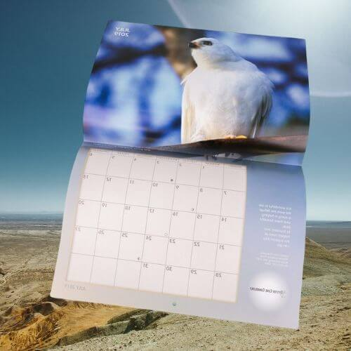 folded spread wall calendar